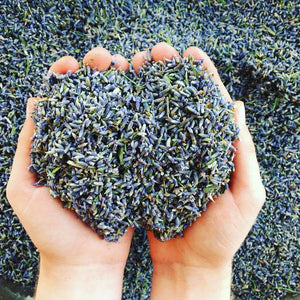 Dried & Fragrant Lavender Confetti - 1 lb - Lavender Wedding Co