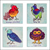 Birds of a Feather Coasters