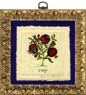 Pomegranates - Hebrew