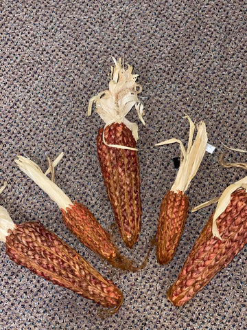 Red Corn with raffia stalks - Large