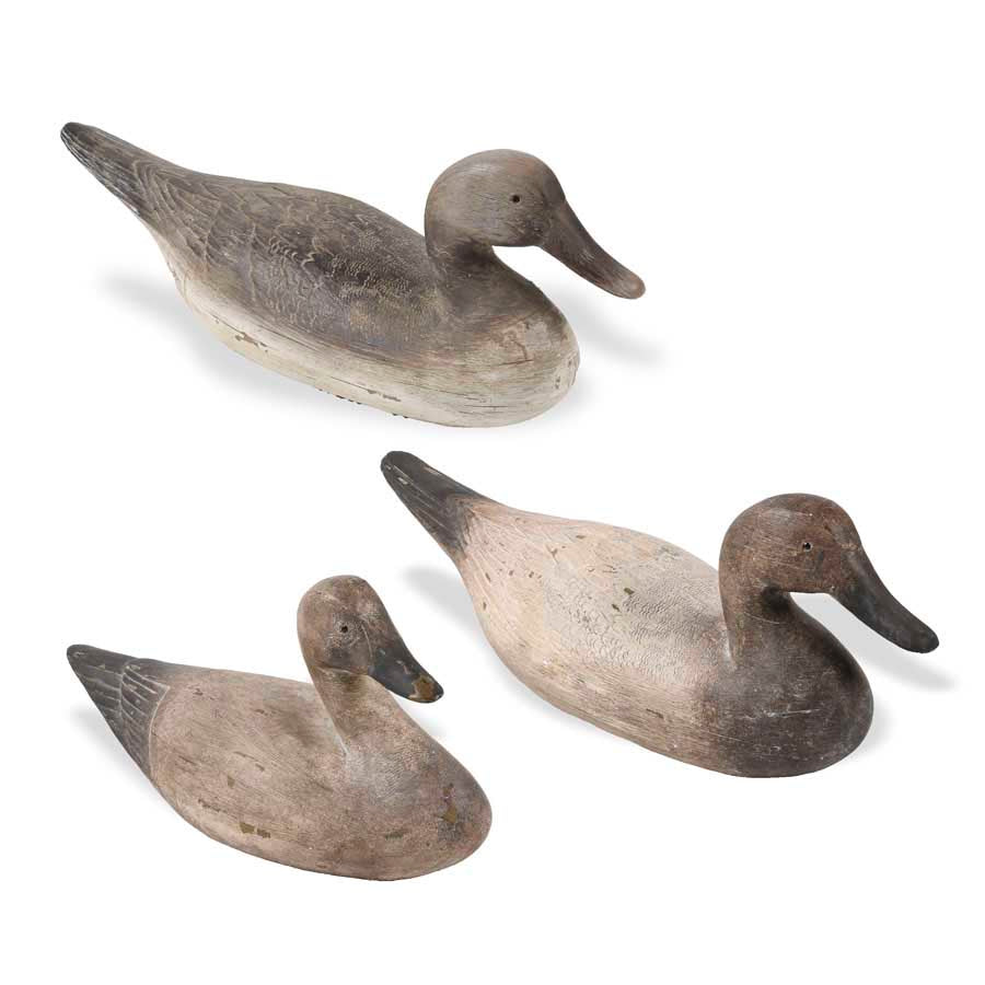Assorted Resin Duck Decoys, Set of 3