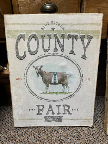 County Fair Picture