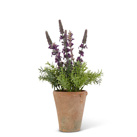 "12.5"" Purple Lavender in Distressed Clay Pot"