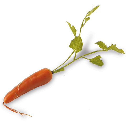 17 Inch Orange Long Carrot