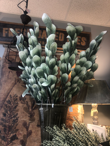 Tall Green stems with rounded leaves & frosted tips