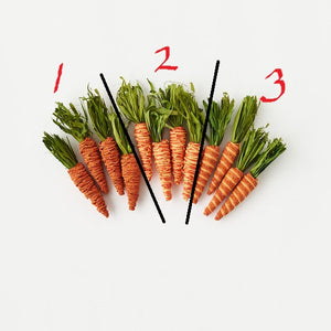 Set of Four Carrots! Three Styles!