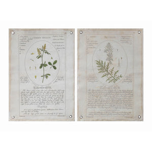 Canvas Wall Decor w/ Vintage Reproduction Botanical w/ Grommets!!! TWO OPTIONS!