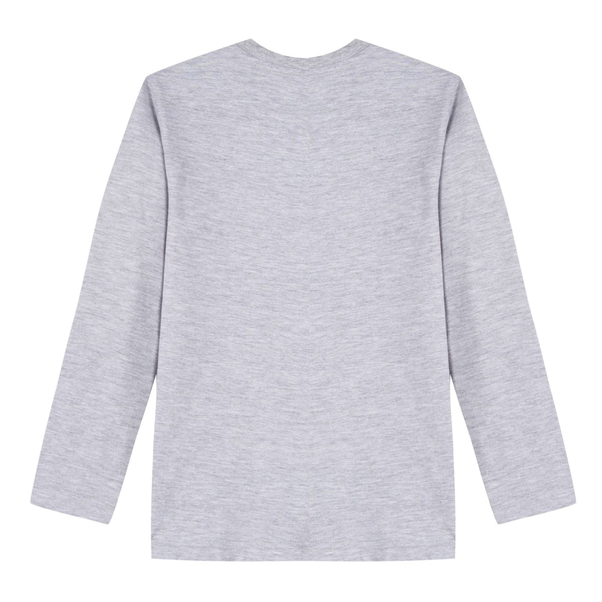 Boys Grey Cotton Print T-Shirt
