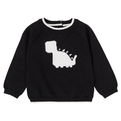 Boys Black Dino Sweater