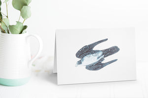 Wildshed greetings cards - peregrine falcon
