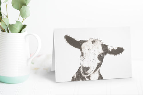 Wildshed greetings cards - goat