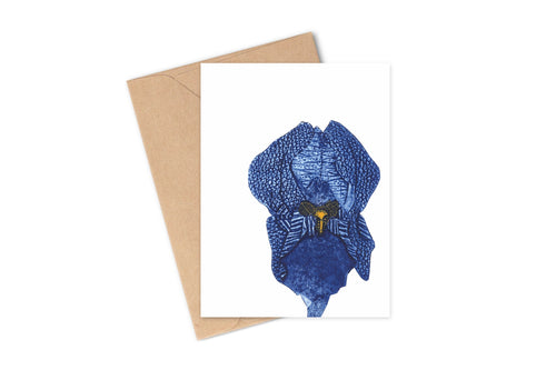 Wildshed greetings cards - iris
