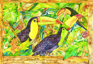 TOUCANS - Limited Edition
