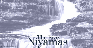 Part Two: The Five Niyamas