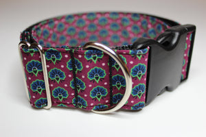 "Buckle Collar in ""Fancy Fans"""