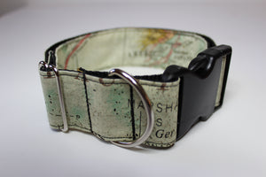 "Buckle Collar in ""Explorer"""