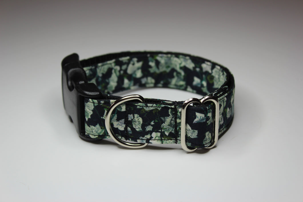 Buckle Collar in