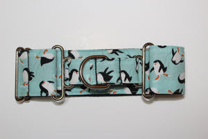 "Sighthound Collar in ""Penguins"""