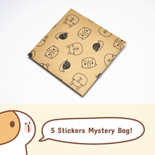 Noristudio 5 Stickers Mystery Bag
