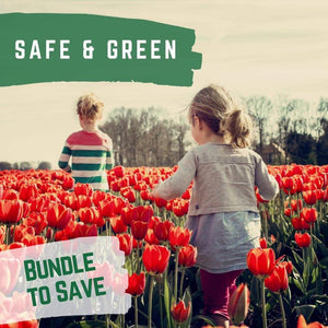 SAFE & GREEN: Small Safe Steps & Small Green Steps packaged together.