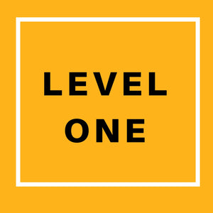 SAFETY PROGRAM - Small SAFE Steps (Level One)