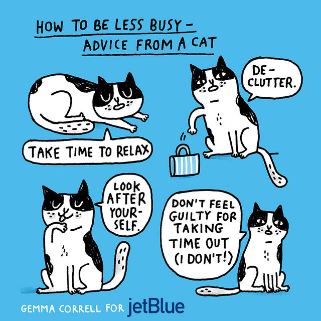 Cat Advice