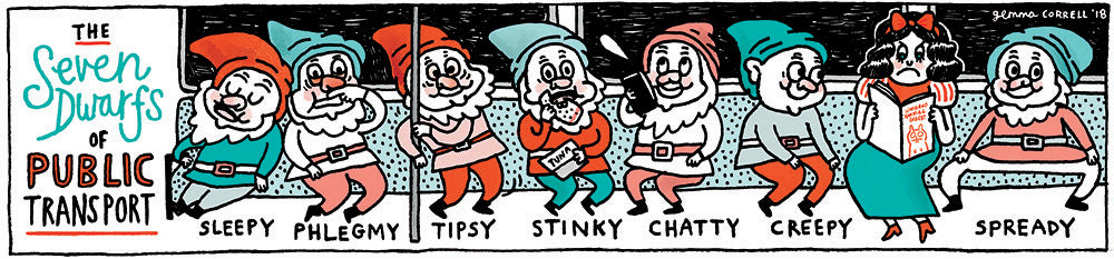The Seven Dwarfs of Public Transport