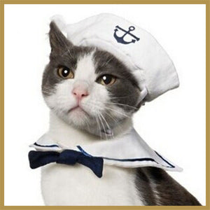 Navy Sailor Suit