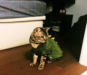 Red & Green Dragon Costume