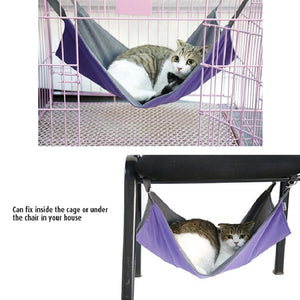 Purple Cat Hammock