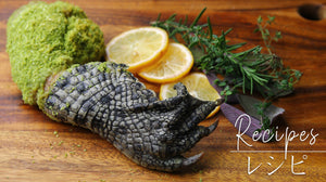 Herbs and parmesan panko crusted crocodile leg