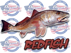 Redfish II full color vinyl fish decal