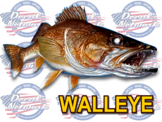 Walleye full color vinyl fish decal