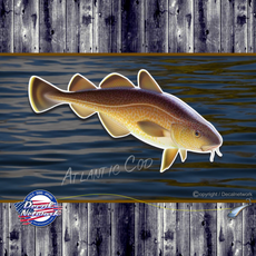 Atlantic Cod full color vinyl fish decal sticker