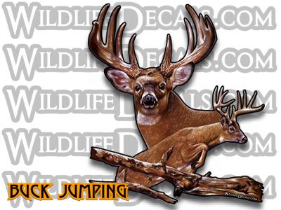 Whitetail deer jumping buck vinyl decal full color wildlife decals
