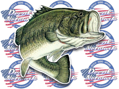 Image of Large mouth bass vinyl decal full color