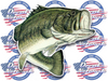 Large Mouth Bass color vinyl fish decal sticker