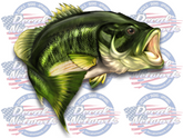 Large Mouth Bass full color vinyl fish decal