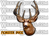 monster whitetail buck sticker