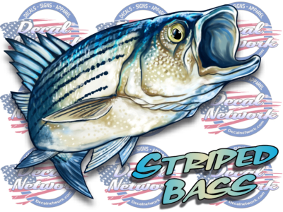 Striped Bass Rock fish full color fish decal