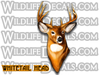 whitetail buck deer head decal