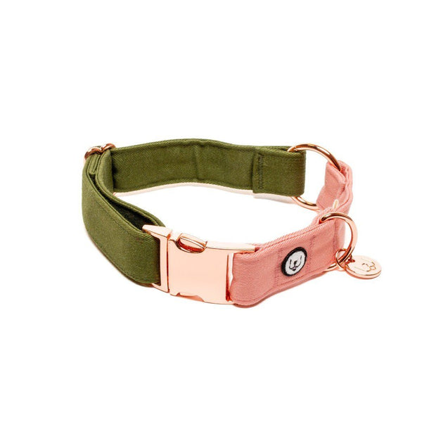 Two-Tone Canvas Collar in Grass Green and Blossom Pink
