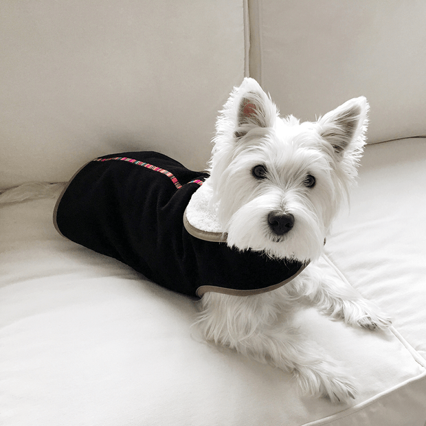 Corduroy Dog Jacket with Faux Lambswool Lining in Black