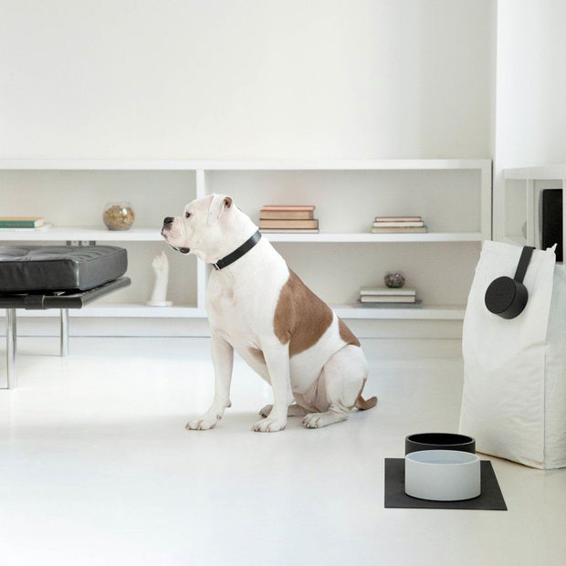 Classic Essential Dog Bowl in Deep Charcoal Gray