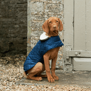 Quilted Waterproof Dog Jacket with Sherpa Fleece Collar in Navy - This Dog's Life