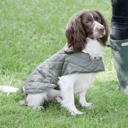 Quilted Waterproof Dog Jacket with Sherpa Fleece Collar in Olive