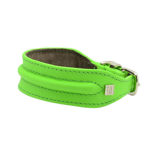 Horizon Hound Leather Collar in Lime - This Dog's Life