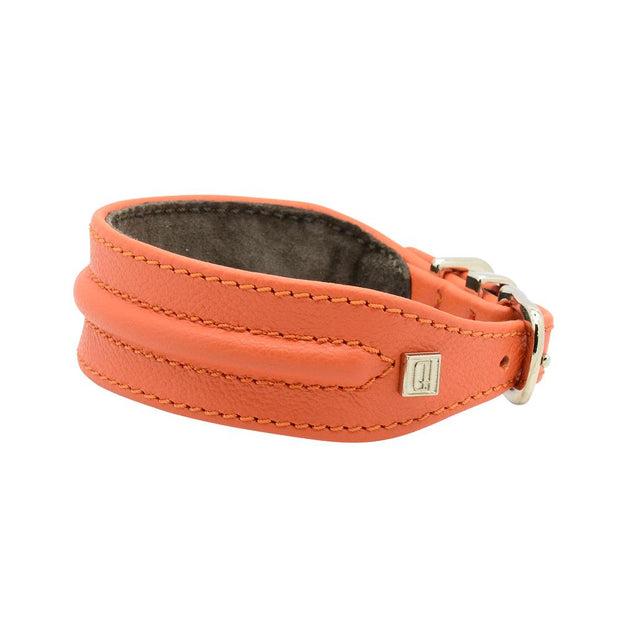 Horizon Hound Leather Collar in Orange Tangerine - This Dog's Life