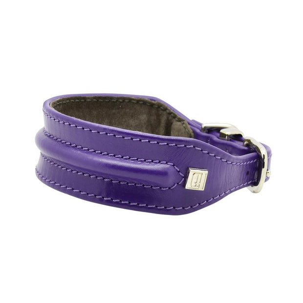 Horizon Hound Leather Collar in Grape - This Dog's Life