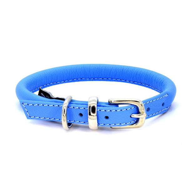 Rolled Leather Collar in Azure - This Dog's Life